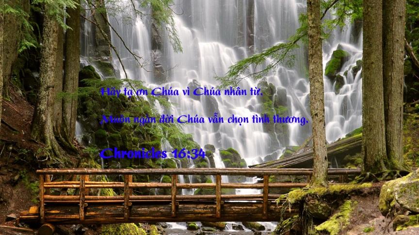 Chronicles16-34